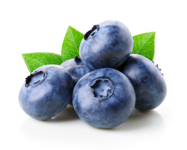 Blueberry Puree Concentrate