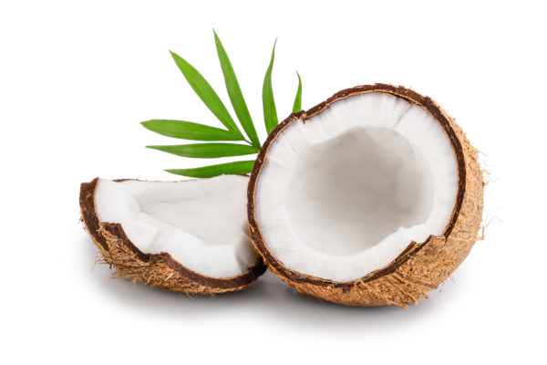 Cream of Coconut (Lopez)