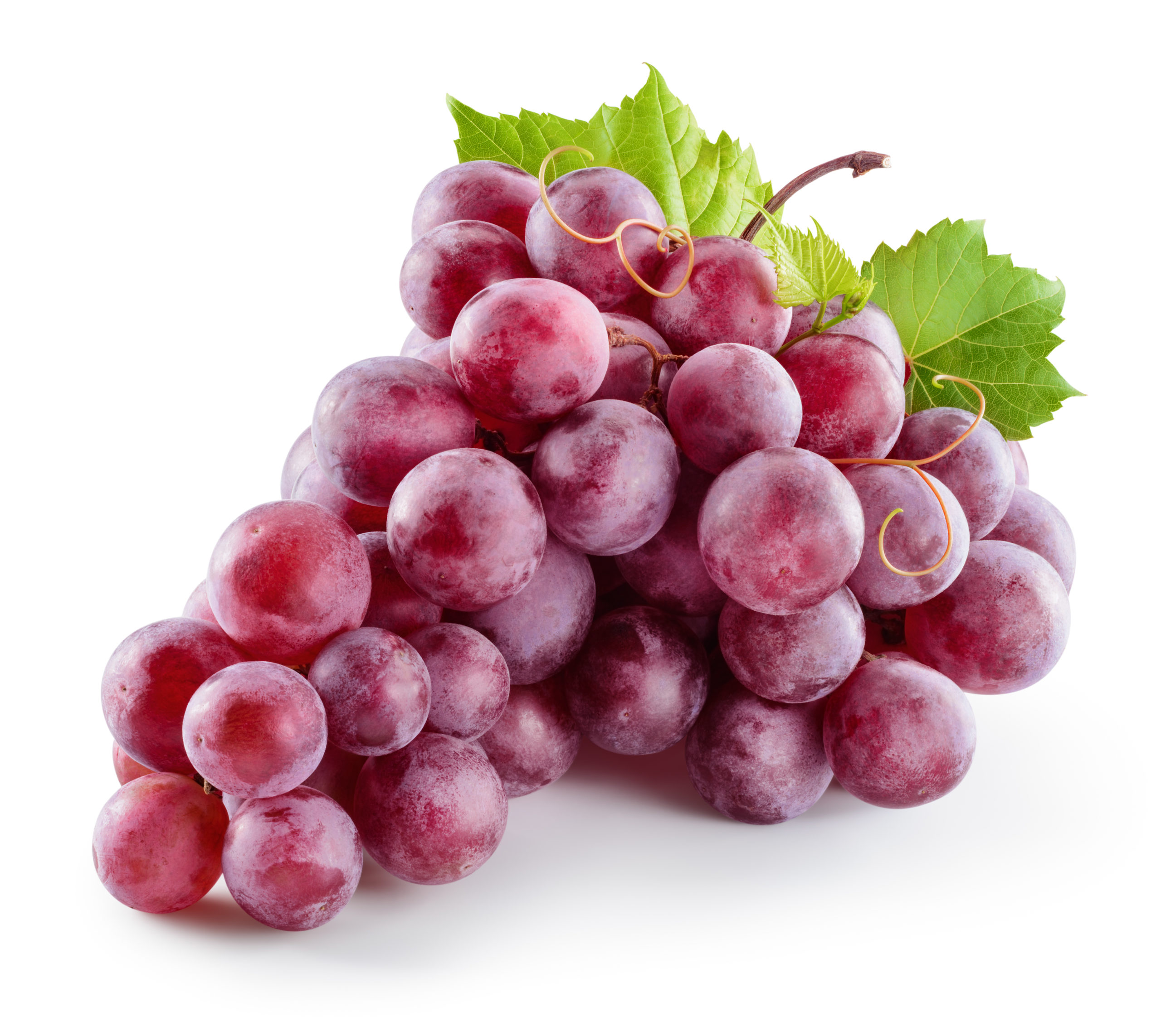Grape Juice Concentrate, Red (Kosher)