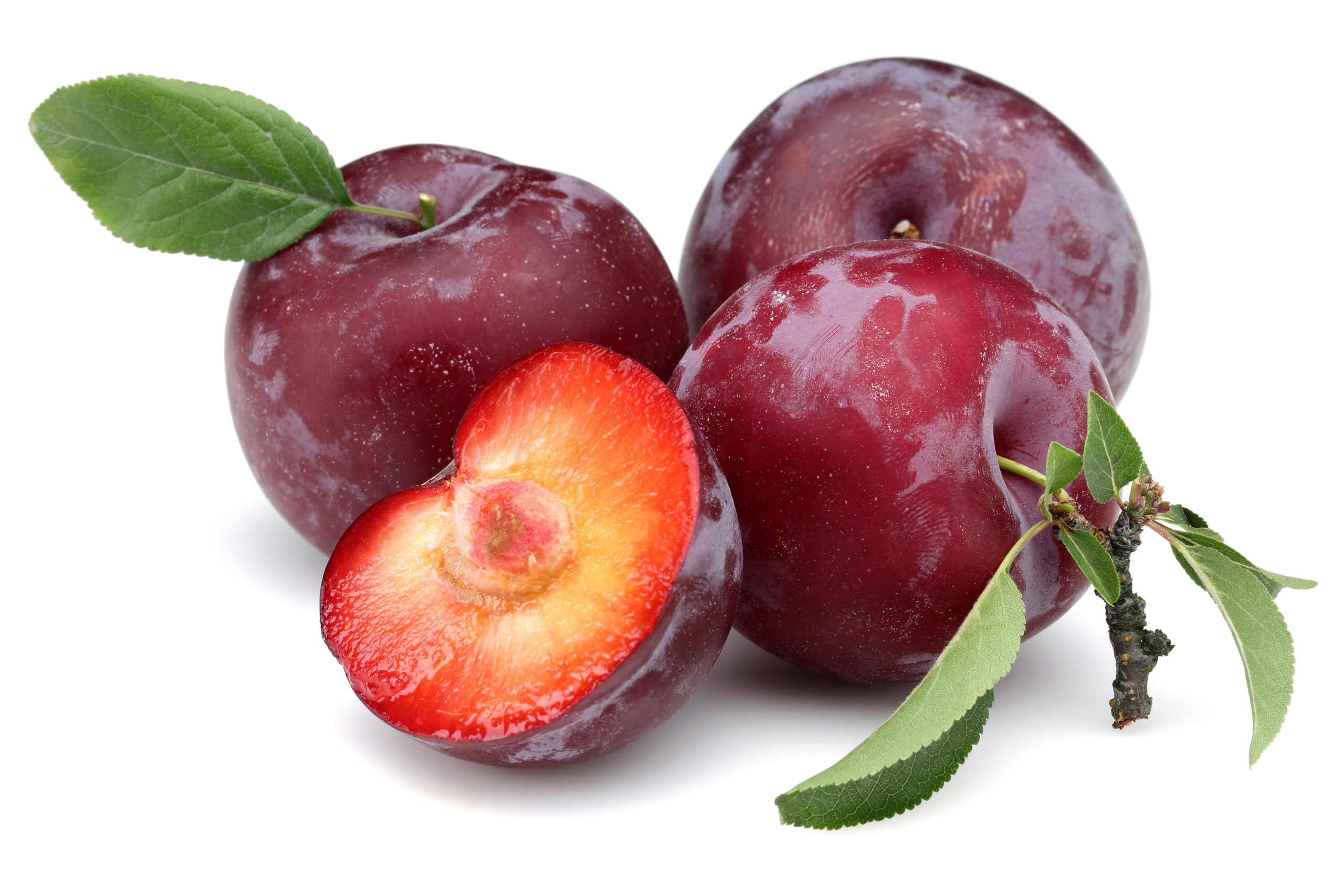 Plum Juice Concentrate